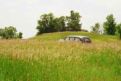 Image of a 1949 Henney Packard hearse way off in a farmer's field.